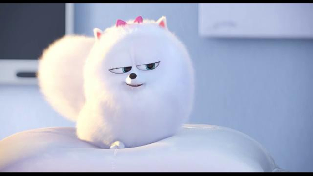 the secret life of pets tv movie trailer   ispot tv