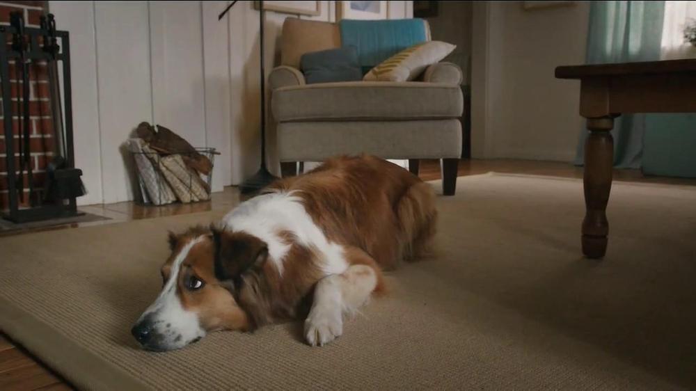 Milk-Bone TV Spot, 'Ready, Set, Go' - Screenshot 3