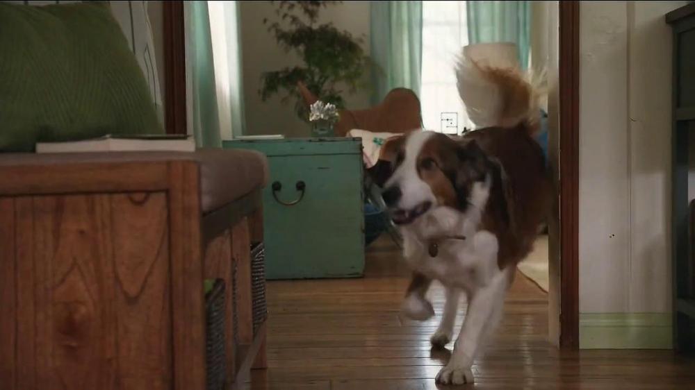 Milk-Bone TV Spot, 'Ready, Set, Go' - Screenshot 5