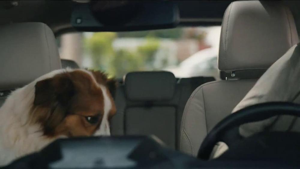 Milk-Bone TV Spot, 'Ready, Set, Go' - Screenshot 7