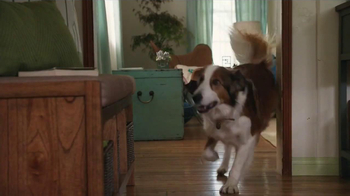 Milk-Bone TV Spot, 'Ready, Set, Go' - Thumbnail 5