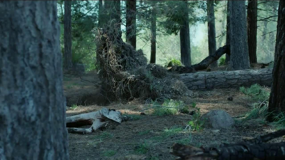 GEICO TV Spot, 'Did You Know: A Tree Does Make a Sound' - Screenshot 10
