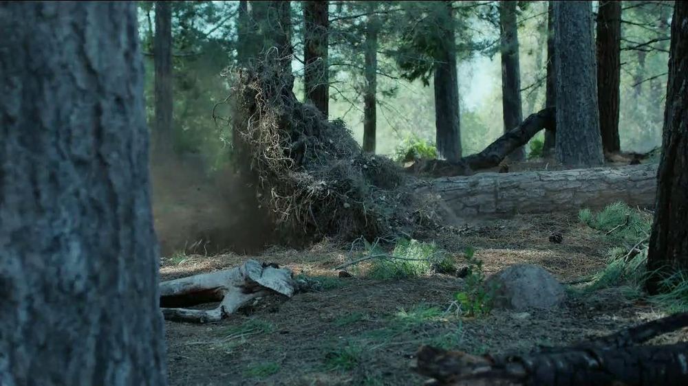 GEICO TV Spot, 'Did You Know: A Tree Does Make a Sound' - Screenshot 9
