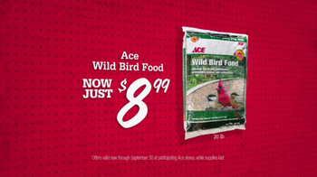 ACE Hardware TV Spot, 'Bird Food and Air Filters' - Thumbnail 3
