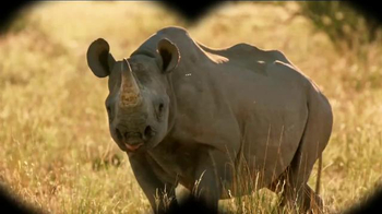 Microsoft Surface TV Spot, 'Protecting the Black Rhino'