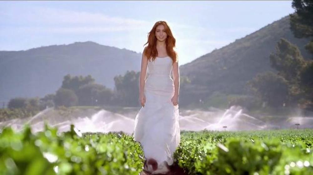 Wendy's Strawberry Fields Chicken Salad TV Spot, 'Wedding'