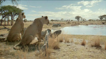 Fiber One TV Spot, 'Don't Fight Your Instincts: Lionesses'