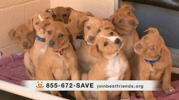 Best Friends Animal Society TV Spot, 'Alfie' Featuring Lisa Edelstein - Thumbnail 4