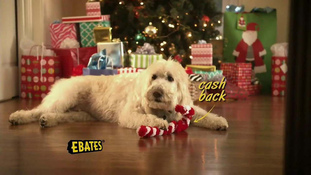 Ebates TV Spot, 'Ebates Family' - Screenshot 3