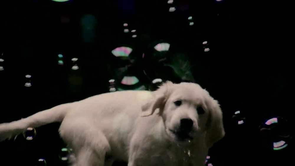 Nickelodeon Bubble Puppy App TV Spot - Screenshot 2