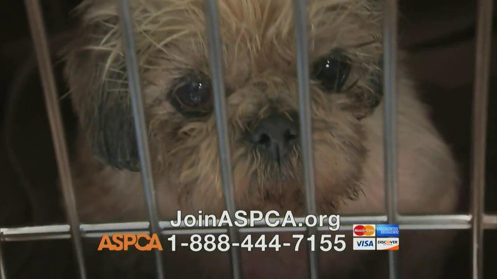 ASPCA TV Spot, Featuring Eric McCormack - Screenshot 4