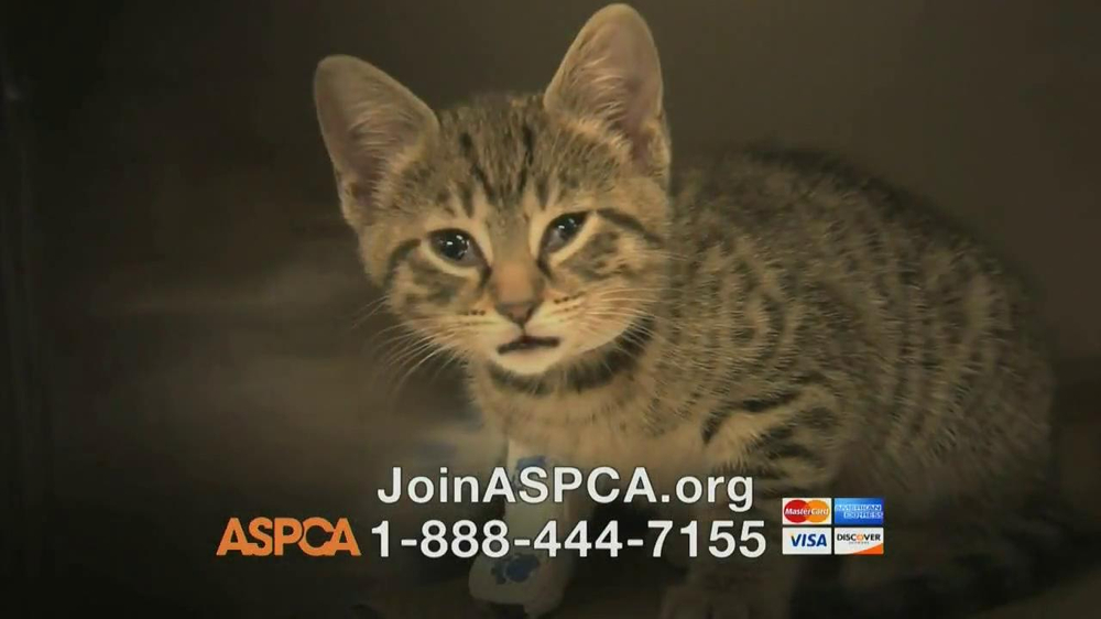 ASPCA TV Spot, Featuring Eric McCormack - Screenshot 5