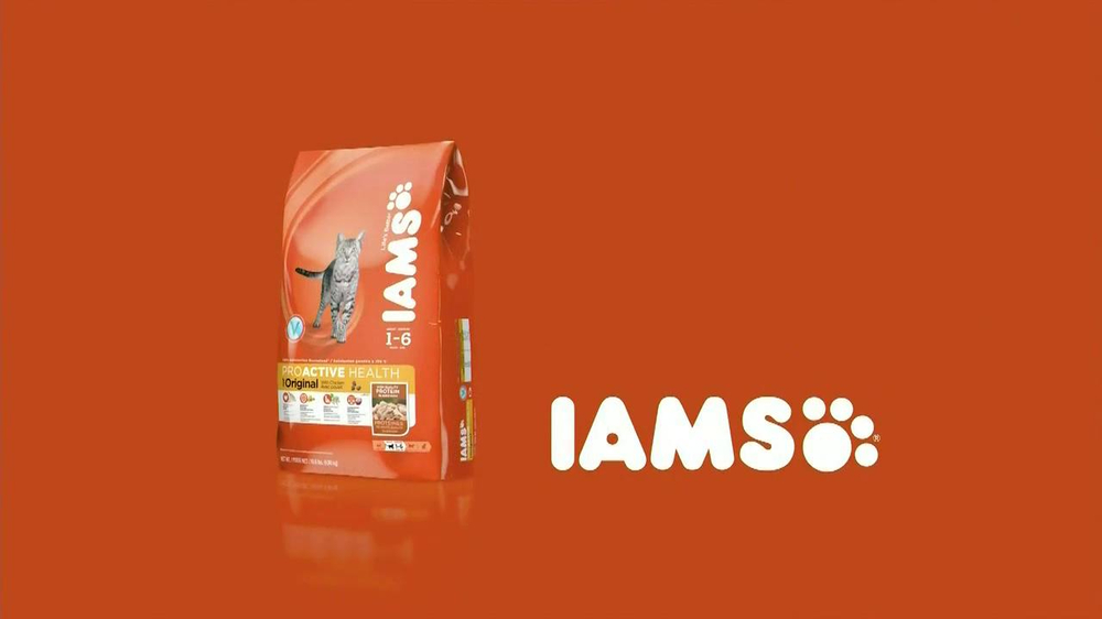 Iams Cat Food Commercial