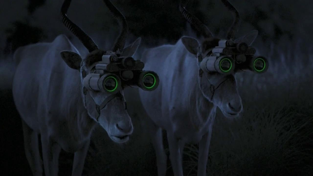 GEICO TV Spot, 'Antelope with Night Vision Goggles' - Screenshot 6