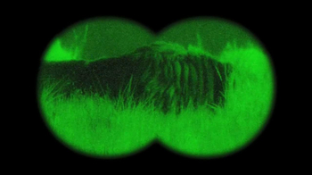 GEICO TV Spot, 'Antelope with Night Vision Goggles' - Thumbnail 7