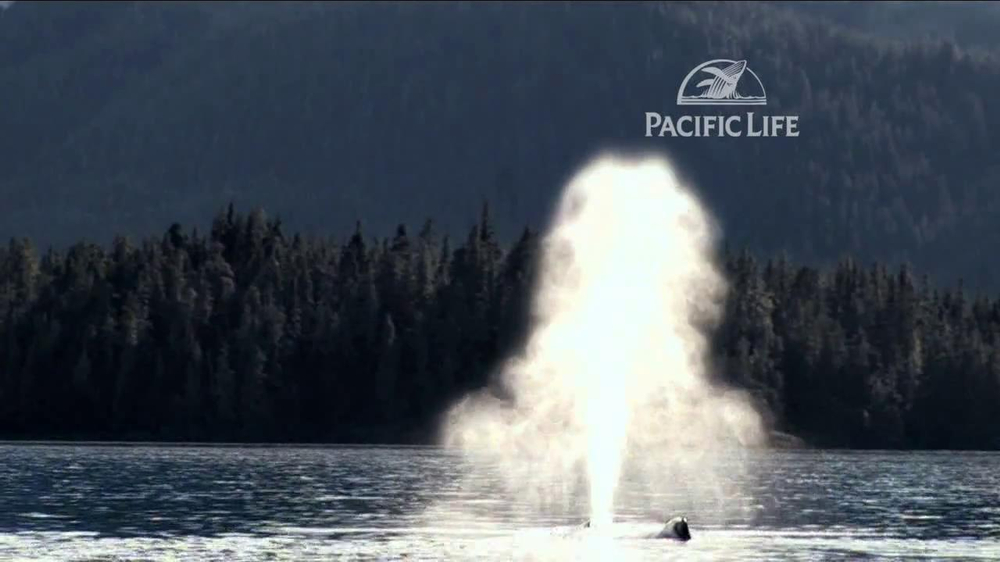 Pacific Life TV Spot, 'Whale' - Screenshot 2