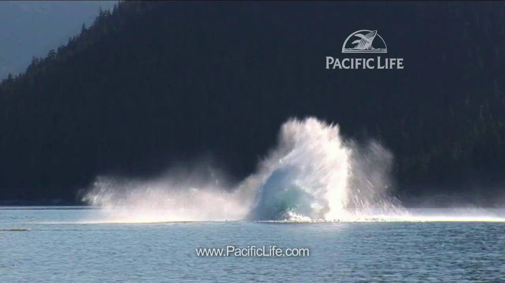 Pacific Life TV Spot, 'Whale' - Screenshot 8