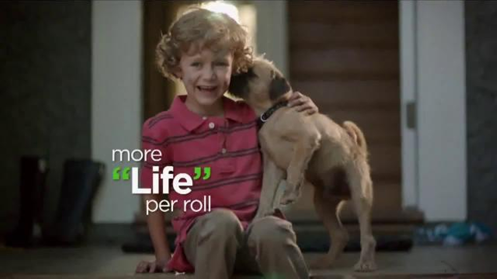 Man In Range Rover Dog Commercial | Dog Breeds Picture