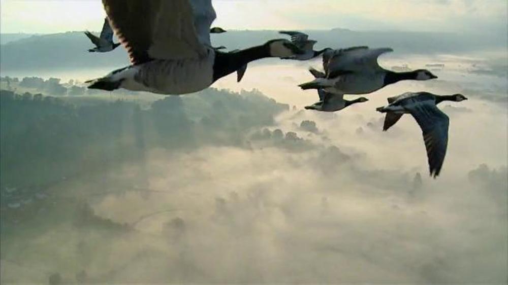 Verizon TV Spot, 'Geese' thumbnail