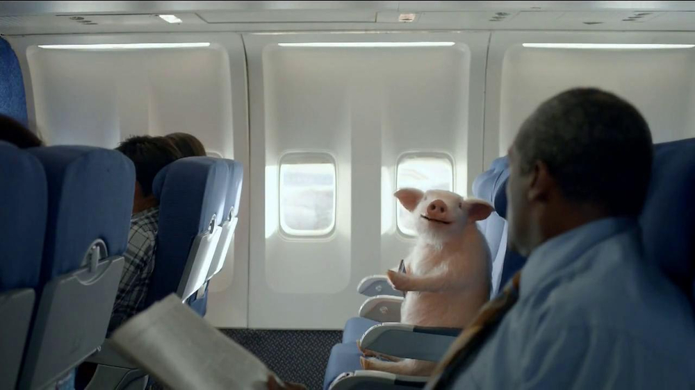 GEICO Mobile App TV Spot, 'When Pigs Fly' - Screenshot 7