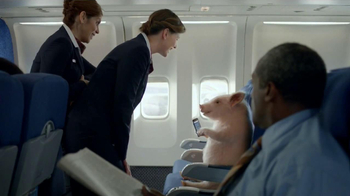 GEICO Mobile App TV Spot, 'When Pigs Fly' - Thumbnail 3