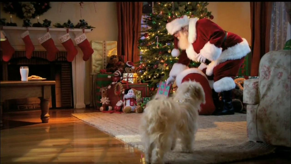 PetSmart Countdown to Christmas Sale TV Spot, 'Martha Stewart Pets' - Screenshot 1