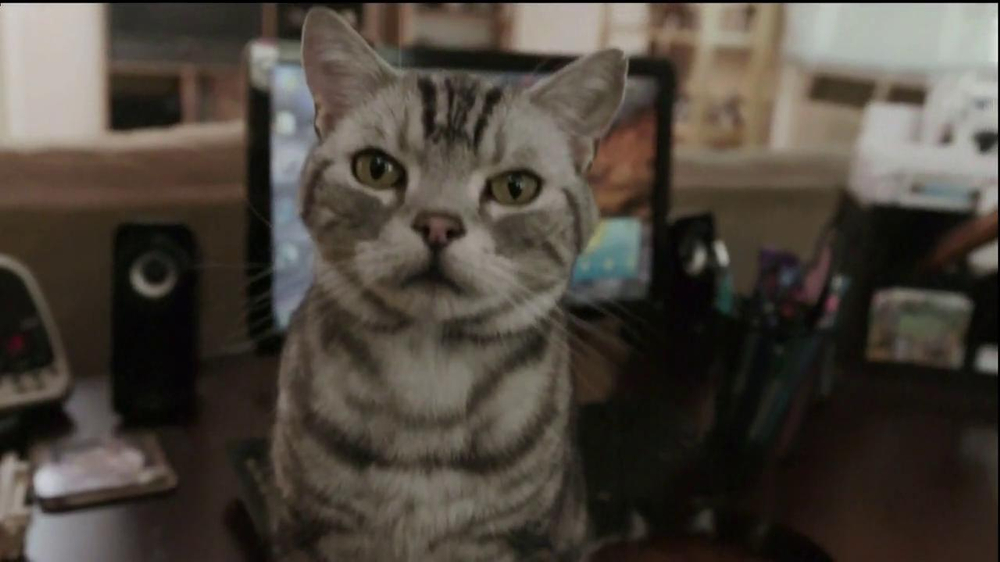 Iams TV Spot, 'Ziggy the Cat' - Screenshot 4