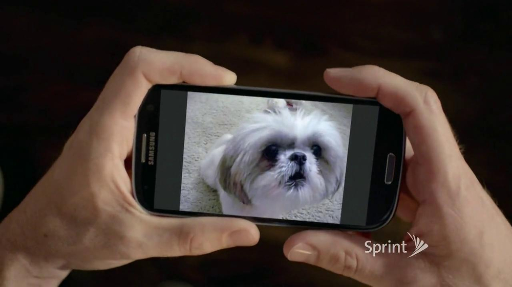 Sprint TV Spot, 'Animals Sing Deck the Halls' - Screenshot 5