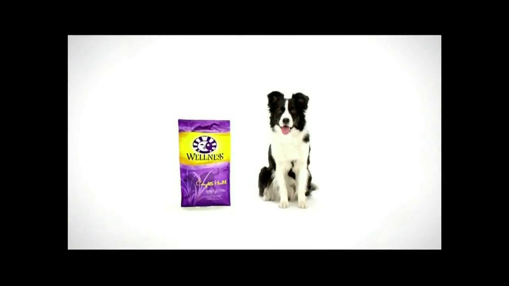 Wellness Pet Food Tv Commercial All Natural Ispot Tv