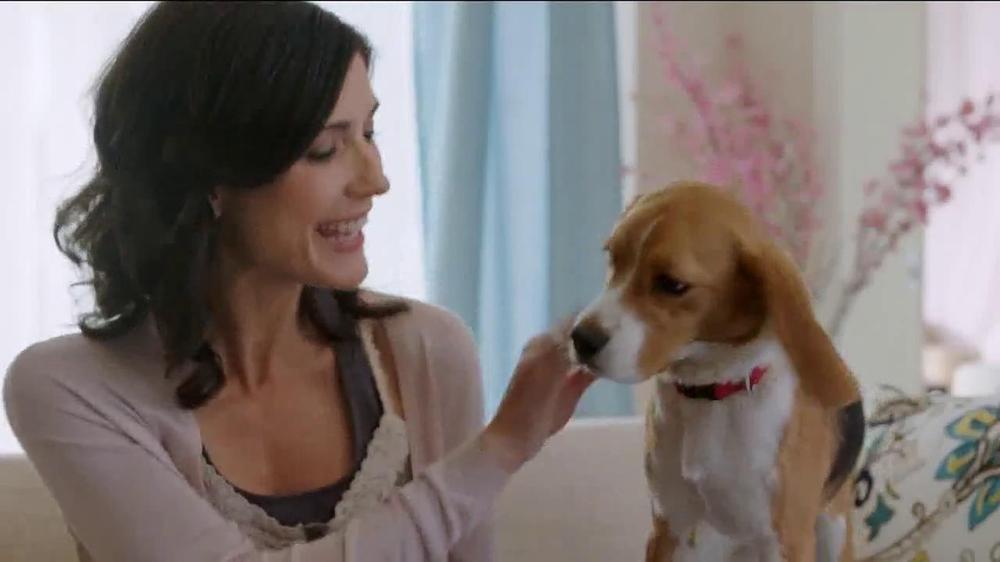 Big Fish Casino TV Spot, 'Puppy' - Screenshot 10