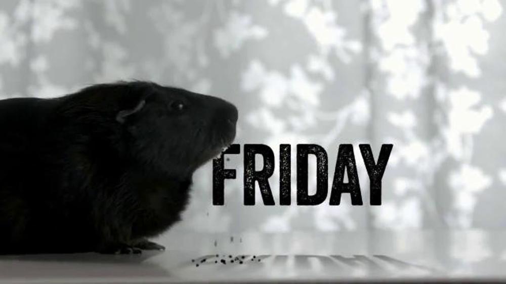PetSmart Black Friday TV Spot, '2014 Black Friday'