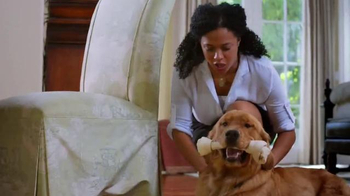 PetSmart TV Spot, 'Positive Chewing Habits' thumbnail