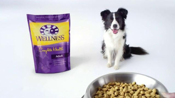 Wellness Pet Food Core TV Spot, 'Why Wellness?