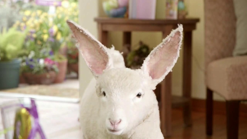 Kmart Easter Shoes TV Spot, 'Lamb-bit' - Screenshot 7