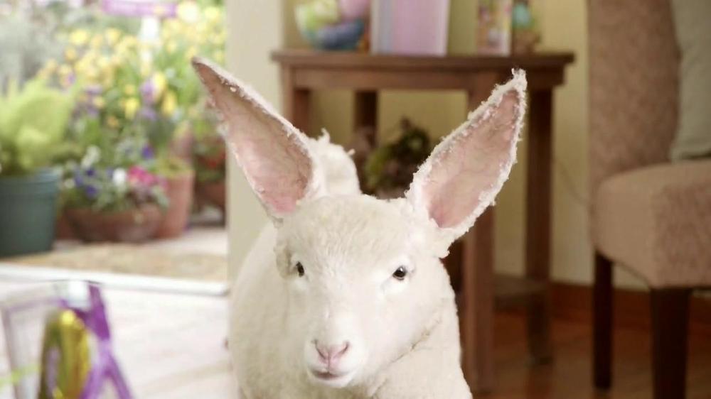 Kmart Easter Shoes TV Spot, 'Lamb-bit' - Screenshot 7