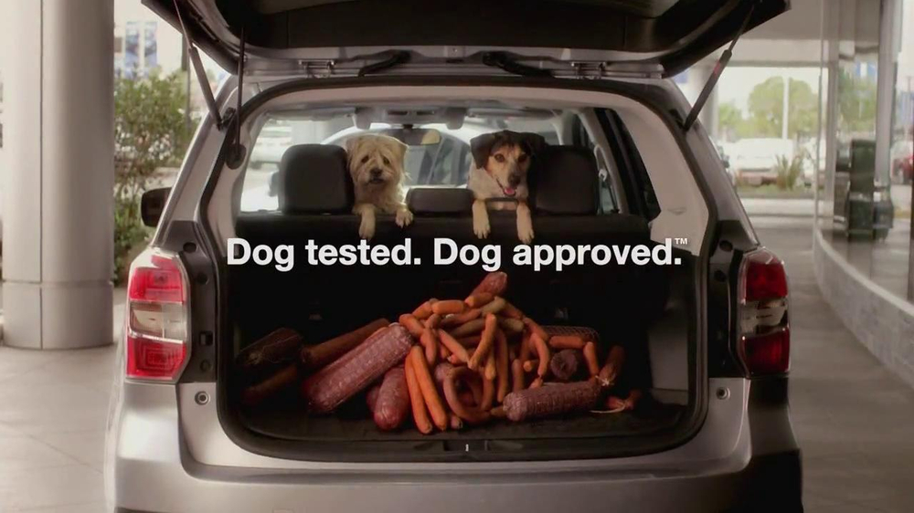 Subaru Forester TV Spot, 'Dog-Approved Trunk' - iSpot.tv