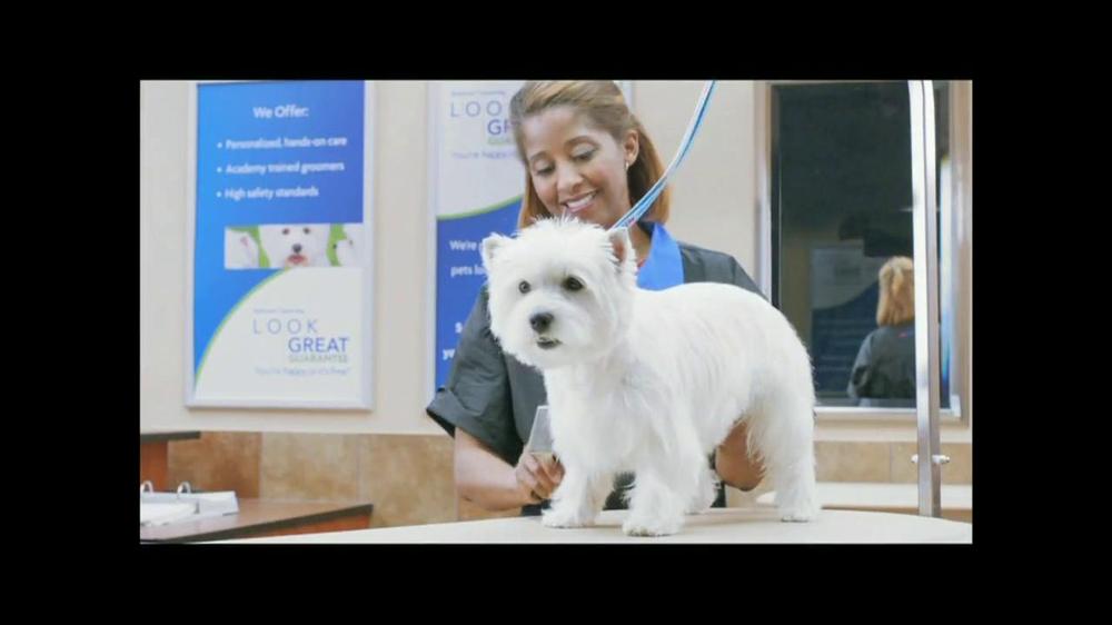 Dog Grooming Table Petsmart