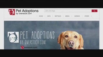 Overstock.com Pet Adoptions TV Spot