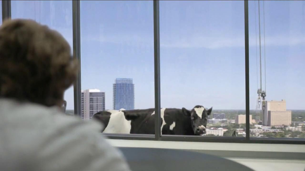 Chick fil a tv commercial reely kevin ispot tv