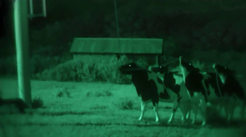 Chick-fil-A TV Spot, 'Night Vision'