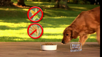 Nutro Natural Choice TV Spot - Thumbnail 6
