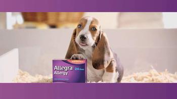 Allegra TV Spot, 'Puppy' thumbnail