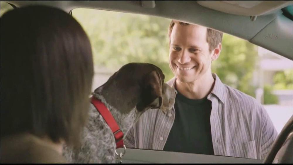 Dogs Tv Commercials Ispot Tv