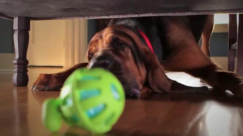 PetSmart TV Spot, 'Play, Seek, Cuddle, Treat' thumbnail