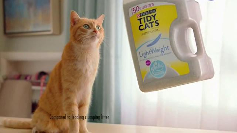 dental rinse for cats