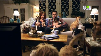 GEICO TV Spot, 'Animal Planet: Carried Away with Puppies'