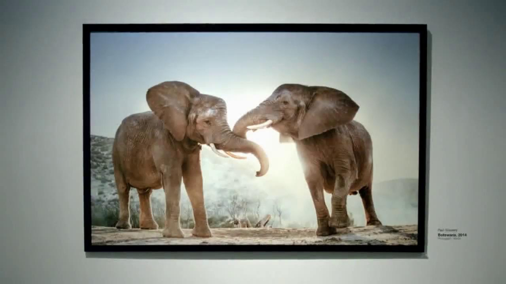 Intel Tablets TV Spot, 'Wildlife Photographer Paul Soulders' - Screenshot 1