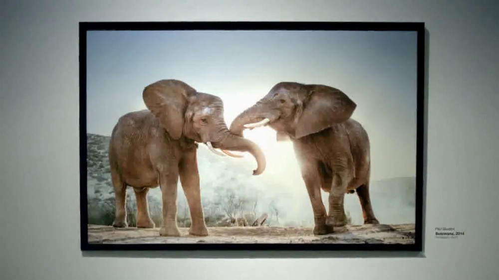 Intel Tablets TV Spot, 'Wildlife Photographer Paul Soulders' - Screenshot 10