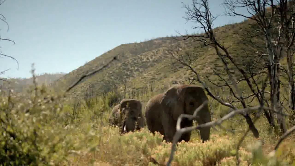 Intel Tablets TV Spot, 'Wildlife Photographer Paul Soulders' - Screenshot 6
