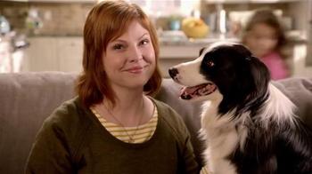 Milo S Kitchen Homestyle Dog Treats Tv Commercial Ispot Tv
